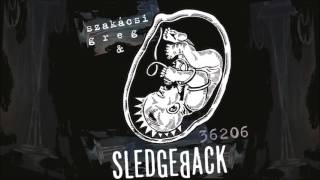 Sledgeback: Jól vagyok  (36206 - 2016) - dalszöveggel w/lyrics