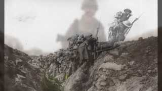 'Brothers in Arms' Remembrance Day video