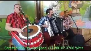 Morena tropicana - Fernandinho Do Acordeon Ao Vivo - Shows (11)98107-3706 WhatsApp