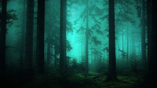 Dark Waltz Music - Moonlit Dust