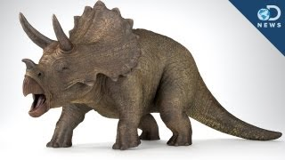 The Dinosaurs You Love Are Fake