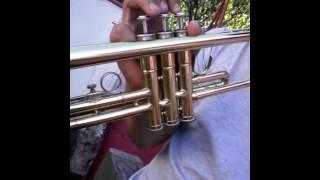 Despacito - Trompeta - Fácil