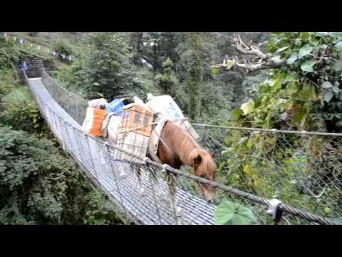 Oak Hall trekking in Nepal 2012