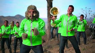 "La Prendidísima Perla de Jerez ""El Mamut"""