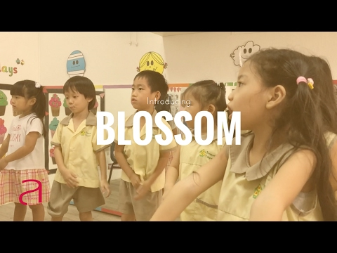Introduction to Blossom Edugroup