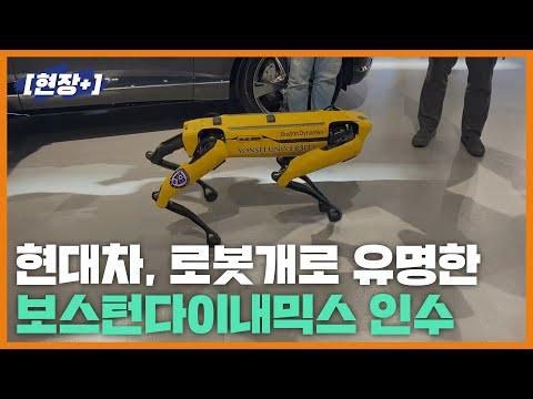 """[현장+]""""이 로봇개 기술이 정말 현대차 것이라고?"""""""