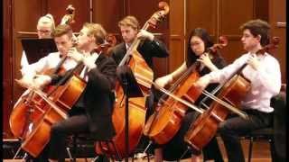 Rondo: Allegro, Eine kleine Nachtmusik - Elder Conservatorium Chamber Orchestra
