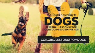 What Dogs Teach Us About God