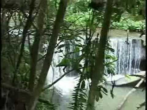 Provincias Ecuador,  Orellana