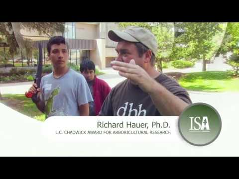 2018 ISA Award of Distinction | Richard Hauer, Ph.D.