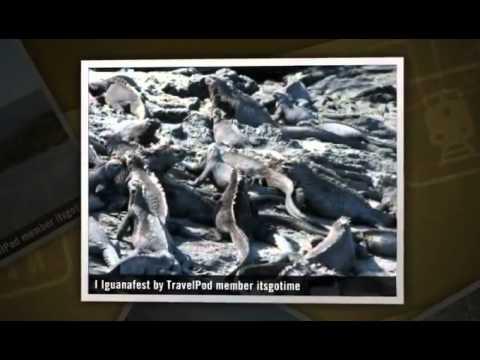 """""""Isabela Island and Fernandina"""" Itsgotime's photos around Galapagos Islands, Ecuador (santa cruz)"""