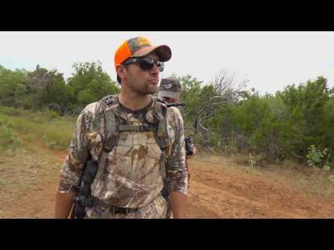 Video: Airbolt Hunt | Pyramyd Air