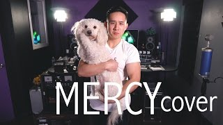 Shawn Mendes - Mercy | Jason Chen Cover