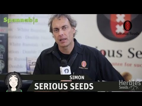 Serious Seeds @ Spannabis Barcelona 2013