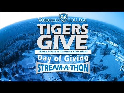 2020 Day of Giving Streamathon