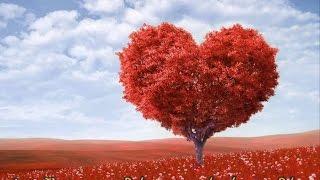 Όπου υπάρχει αγάπη