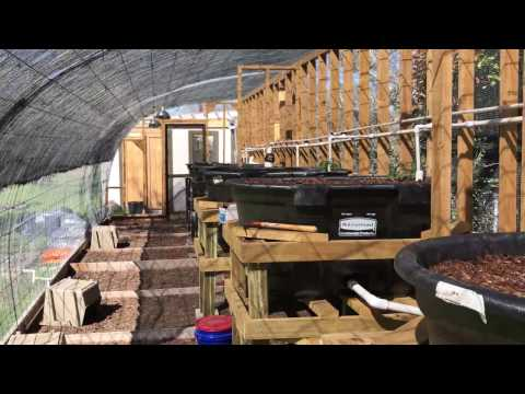 Aquaponics Wicking Beds Completed, Partially Planted