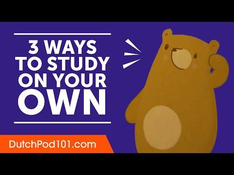 3 Ways to Study Dutch on Your Own photo