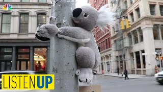 Koalas Spotted Hanging Out Around NYC to Help Animals In Australian Brushfires | Listen Up