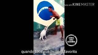 BANDA DJAVU E DJ JUNINHO PORTUGAL