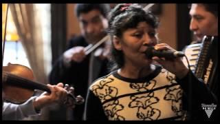 "Taraf De Haïdouks - Balalau From Bucharest - Acoustic Session by ""Bruxelles Ma Belle"" 1/1"