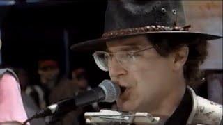 John Sebastian - Harmonica Solo - 8/14/1994 - Woodstock 94 (Official)