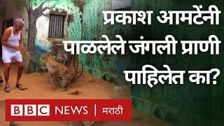 प्रकाश बाबा आमटे: मनाने करोडपती असलेलं व्यक्तिमत्त्व | Prakash Baba Amte (BBC News Marathi)