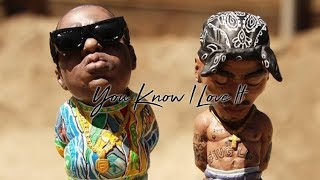 Biggie Smalls Ft. 2pac - You Know I Love It ( Alan Walker Style Remix )