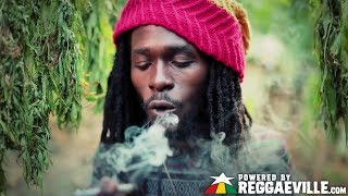 Jesse Royal - Gimmie Likkle / Finally [Official Video 2015] width=