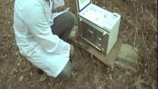 VIDEO. Ce se intampla daca bagi 173 de oua in cuptorul cu microunde. Nu incercati acasa!!!