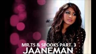 MR.TS (Feat. Spooks) - Jaaneman Remix [Part. 3]