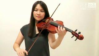 Sia - Unstoppable(Violin Cover)