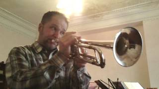 "Only you. Like sang ""Platters"". Trumpet cover."