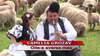 Camelia Grozav   Oile-s averea mea