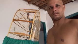 Caboclinho fotocópias de feira de Santana Bahia(1)