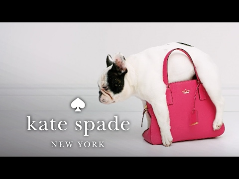 "stick with me, babe: part 2 ""scratch-proof"" 