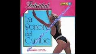 FELICIDAD SONORA DEL CARIBE.wmv