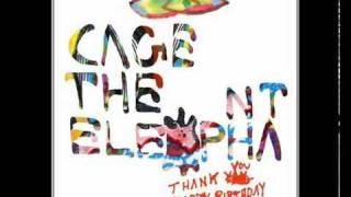 Cage The Elephant - Sabertooth Tiger (Lyrics)