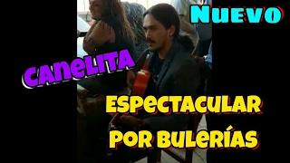 Canelita por bulerías espectacular 2017 / @SiempreVera