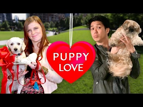 Can your dog get you a date? | Doggie Play Date