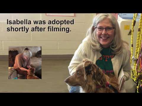 Isabella's Inspiring Story