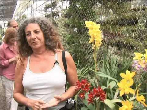 Ecuador Orchid Paradise