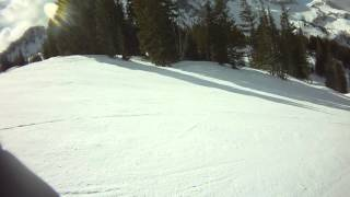 Goose Gully to Molly's Gulch at alta - Full Throttle (Feb 6, 2015)