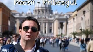 Daniel Buzdugan - Poezii - Pribeagul