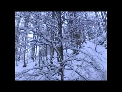 Водопад  Шепот ( Гук) Карпаты. Зима.waterfall Ukraine