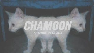 CHAMOON - SEVERAL DAYS AGO (OFFICIAL VIDEO)