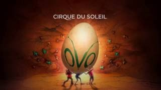 OVO by Cirque du Soleil  - What's new and improved? Video Projections