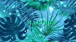 """MARIMBA"" | J Hus x Yxng Bane Type Beat |  Beat | Afrobeats Instrumental 2018"