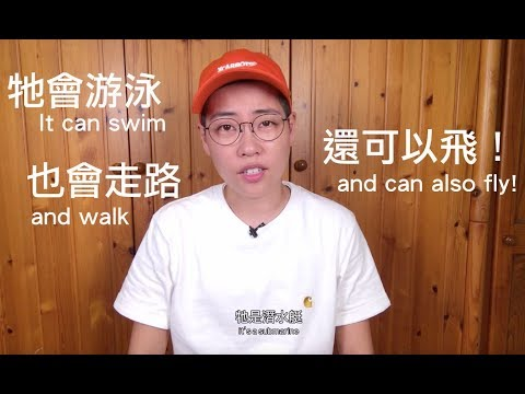 昆蟲擾西上課了!水陸空三棲!Water scorpion - YouTube