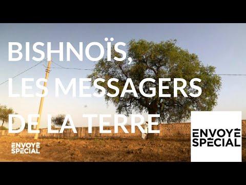 nouvel ordre mondial | Envoyé spécial. Bishnoïs, les messagers de laTerre - 4 octobre 2018 (France 2)
